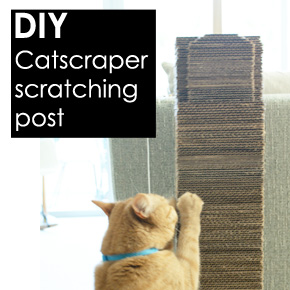 """Catscraper"": DIY Cat Scratching Post"
