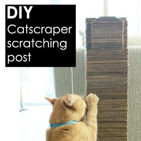 """Catscraper"": DIY Cat ScratchingPost"