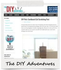 Featured On: The DIY Adventures