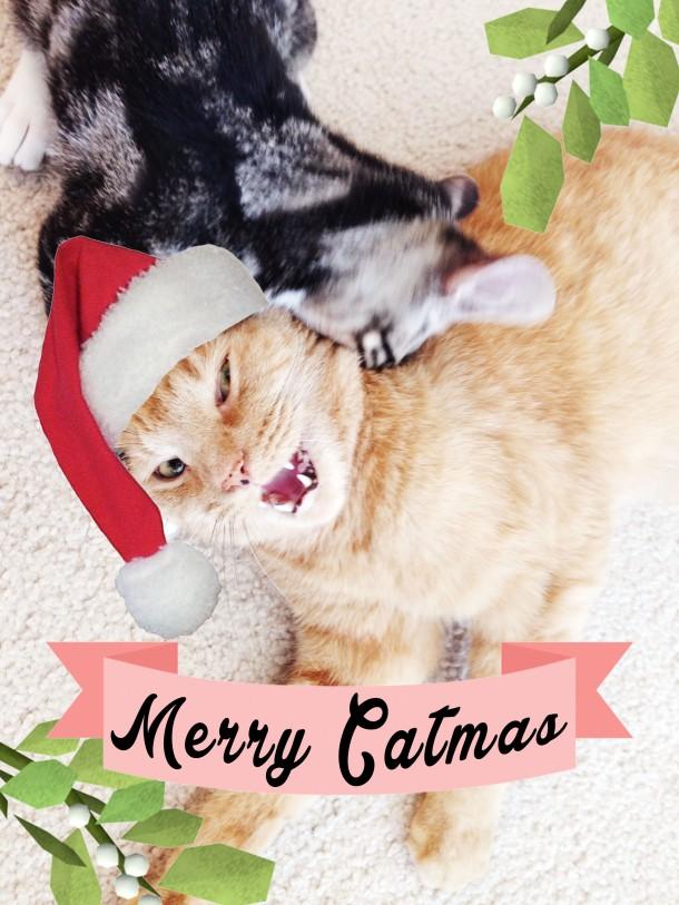 merry_catmas